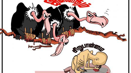 Sri Lanka racism (1)