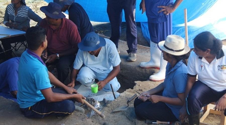 மன்னாரில் 175 மனித எலும்புக்கூடுகள் கண்டு பிடிக்கப்பட்டுள்ளதாக விசேட சட்ட வைத்திய நிபுணர் தகவல்