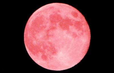 strawberrymoonfull-1560947644